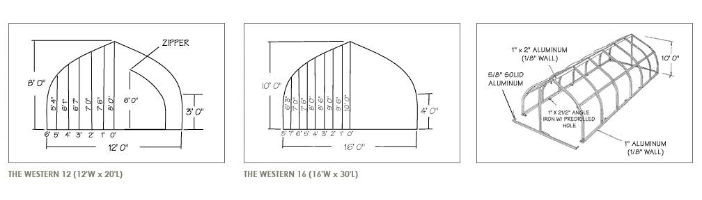 western7